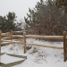 winter-fence