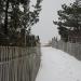 winter-path