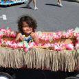 81st Baby Parade 2013
