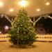 xmas tree lighting 025