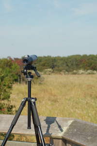 cmp-telescope
