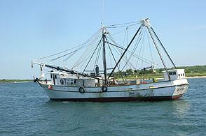whalewatchfishingboat