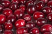 garden_berries