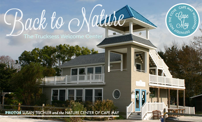 Weddings at the Trucksess Welcome Center  - Cape May Nature Center weddings