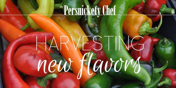 Harvesting new flavor
