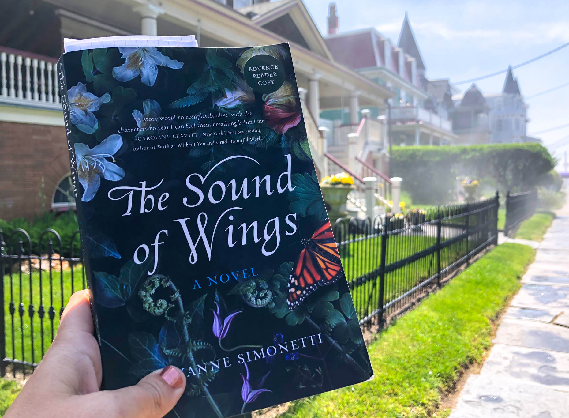 The fog burning off along Ocean Street and the book The Sound Of Wings