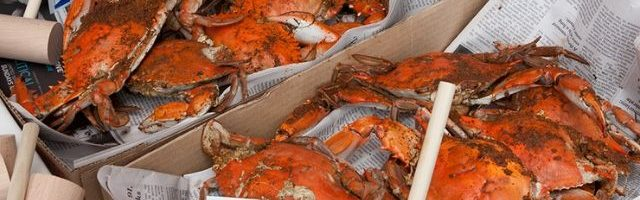 Boxes of steamed crabs and wooden hammers on newspapers