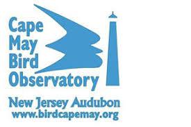 New Jersey Audubon - Cape May Bird Observatory