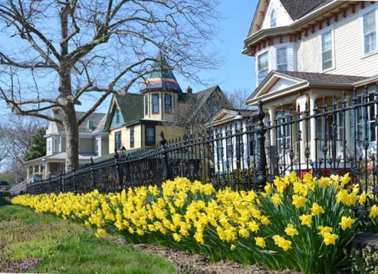 Bright yellow flourish