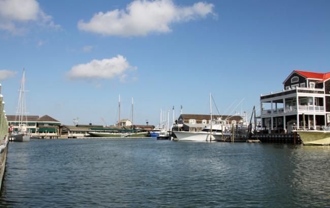 Along the dock