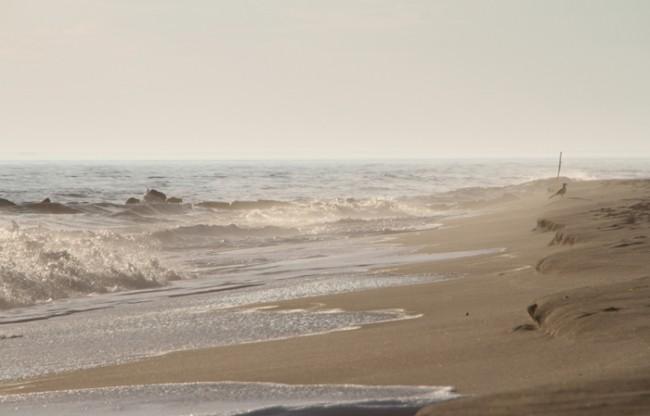 Lone beach goer