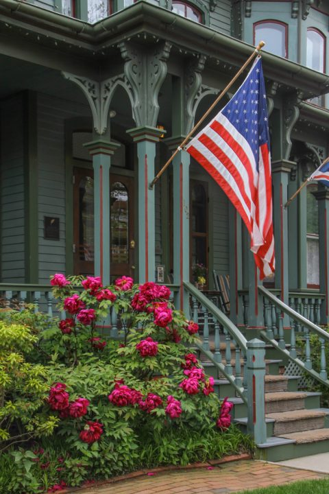 Stars and Stripes and Flowers