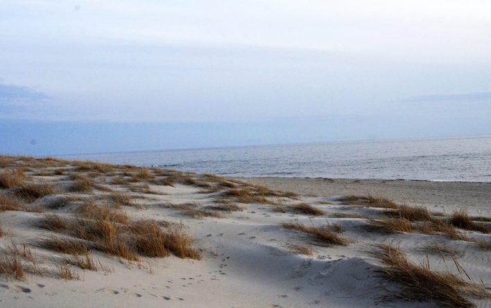 Gentle dunes