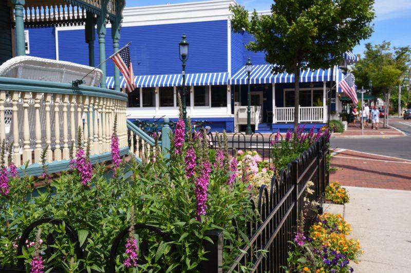 A garden on Decatur Street