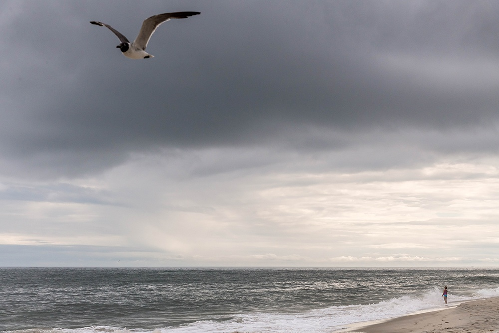Cloudy day shot on the beach with a seagull flying and someone swimming in the distance