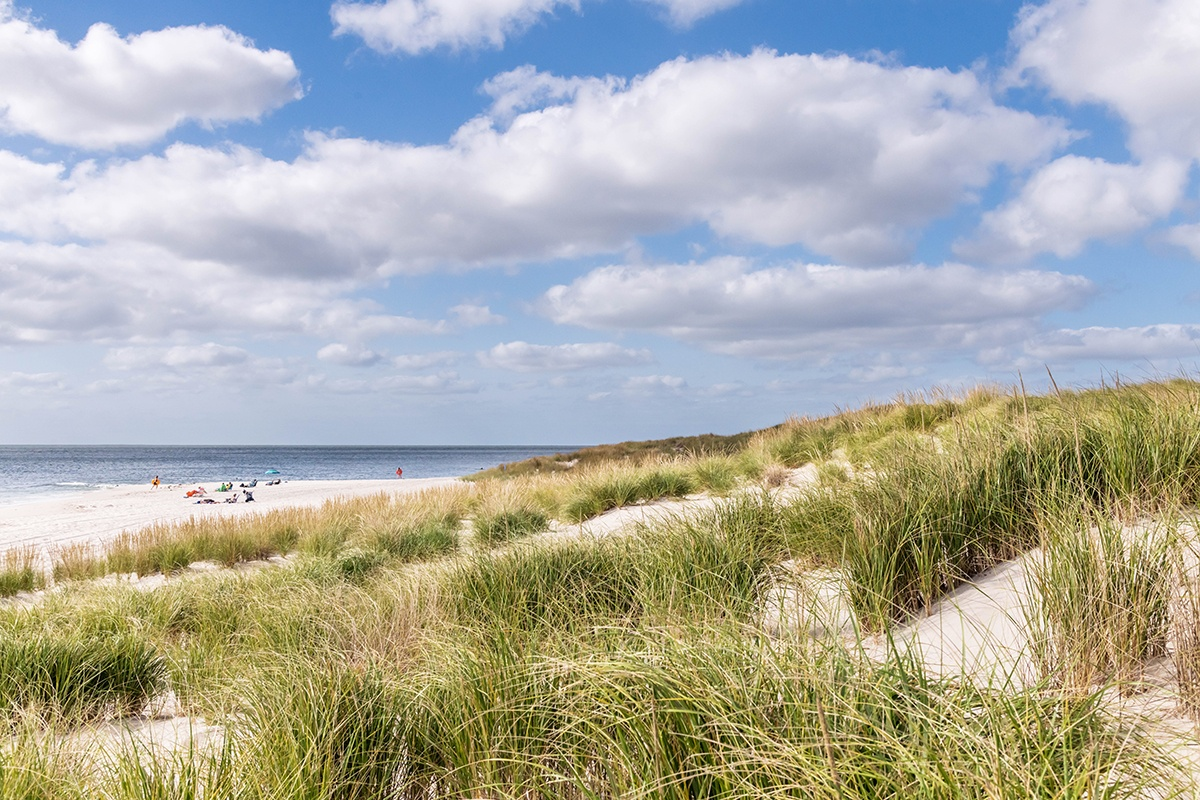 A view of beach dunes with a blue sky with puffy clouds