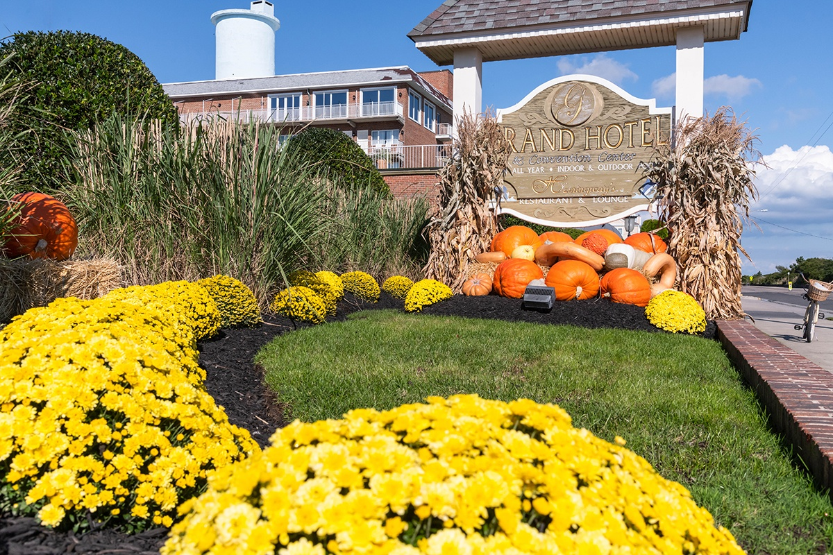 A row of yellow mums leading to a pile of pumpkins at the Grand Hotel