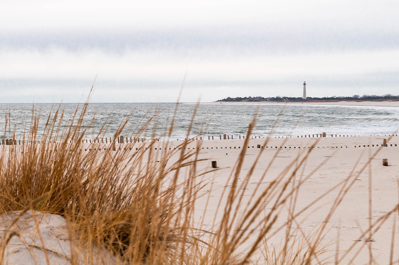 A viewing through the beach dunes with the Cape May Lighthouse in the distance