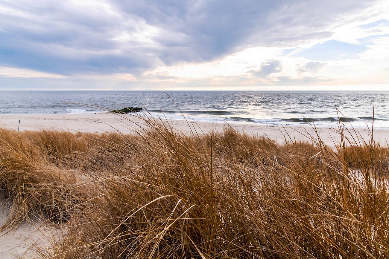 Looking through beach dunes to the ocean and a cloudy sky