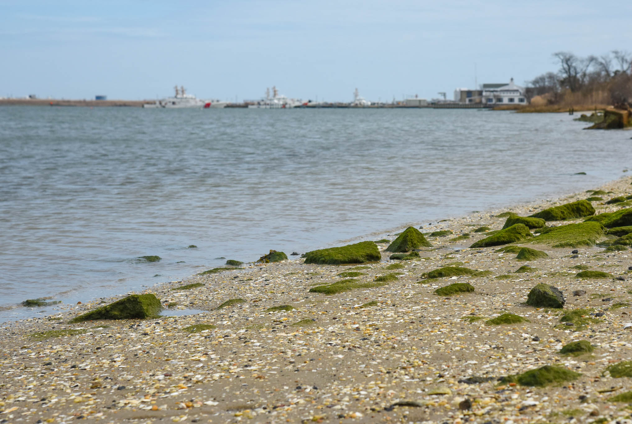 Walking at the edge of the Cape May Harbor.