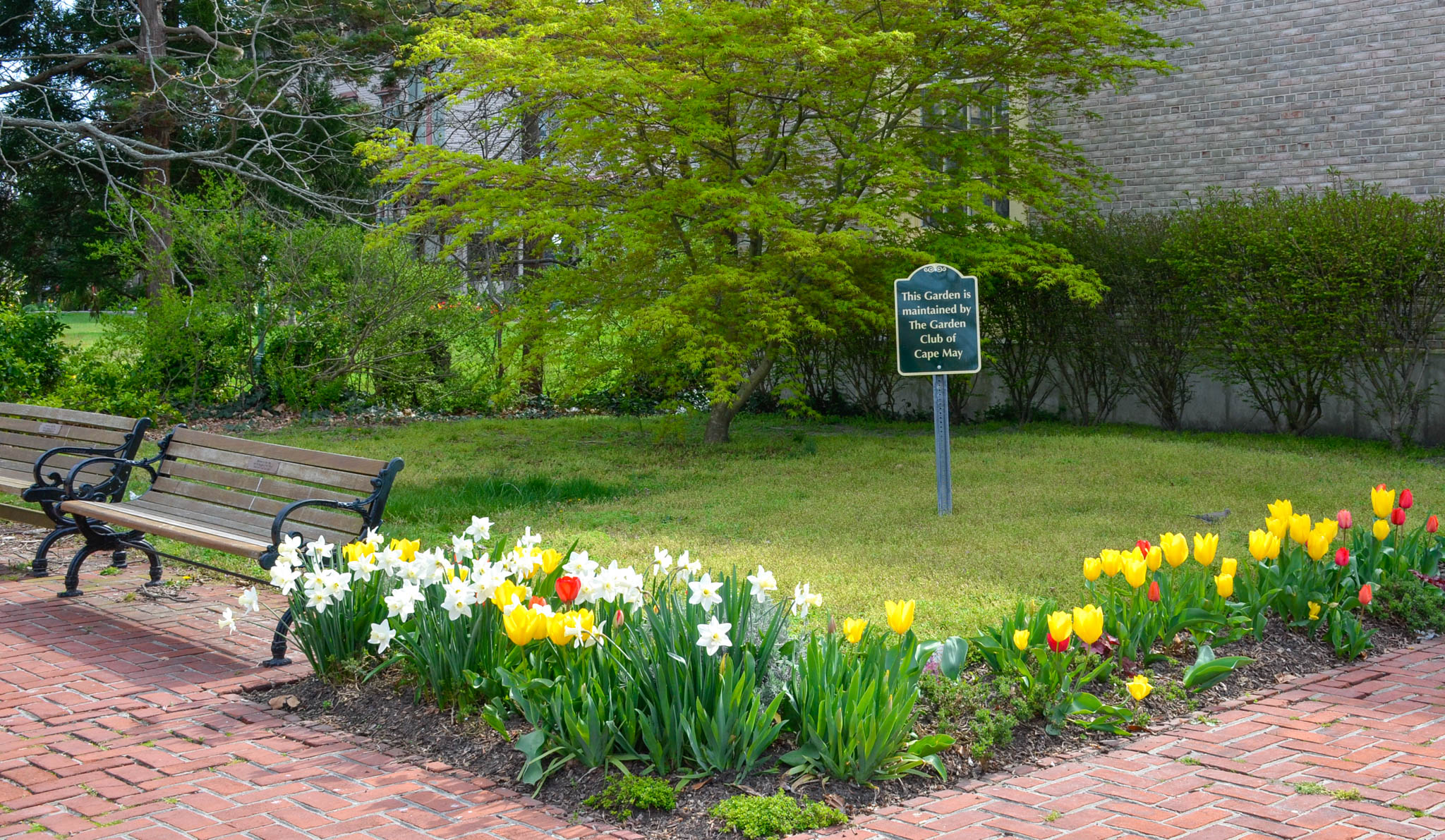 Cape May Garden Club did the flowers for the local Post Office