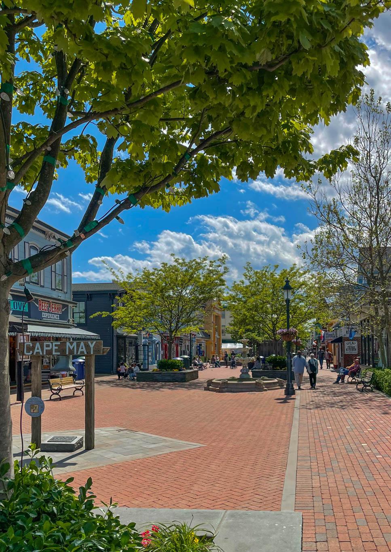 On the Washington Street Mall on a sunny day