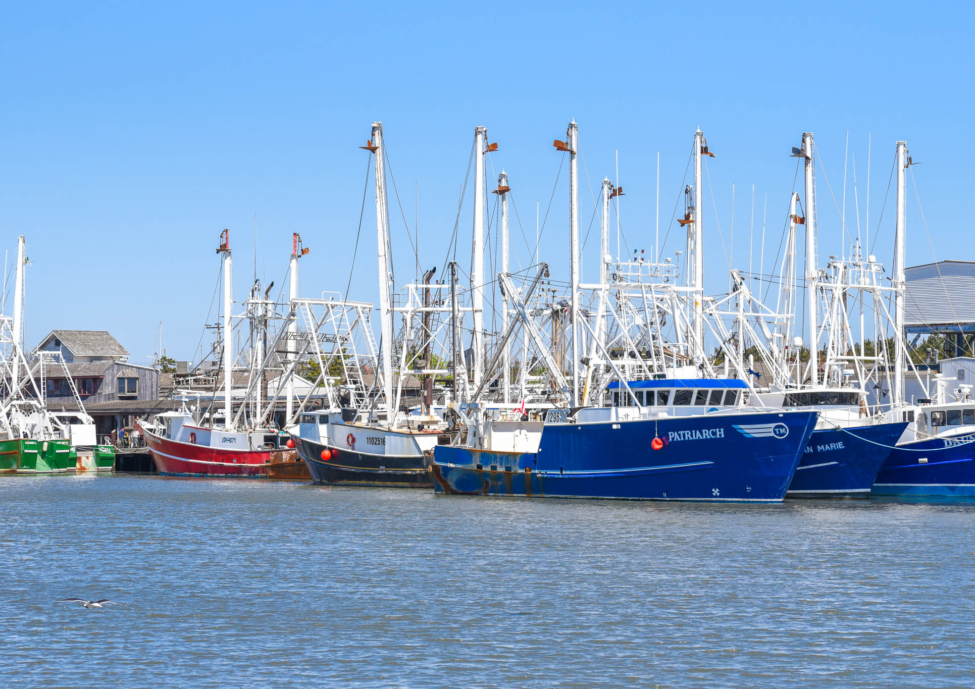 Looking over the Cape May Harbor at the commercial Fishing Boats