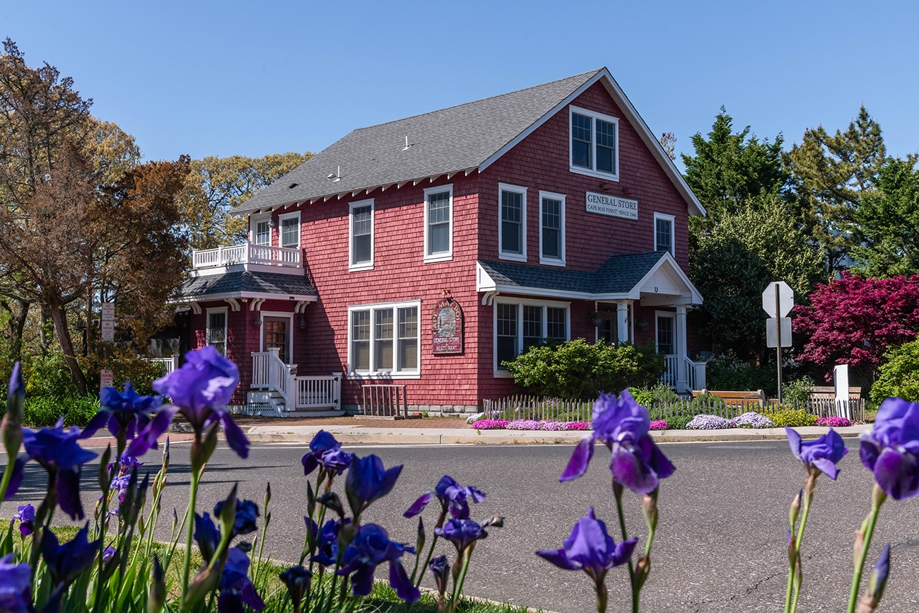 Purple flowers in front of the Red Store in Cape May Point