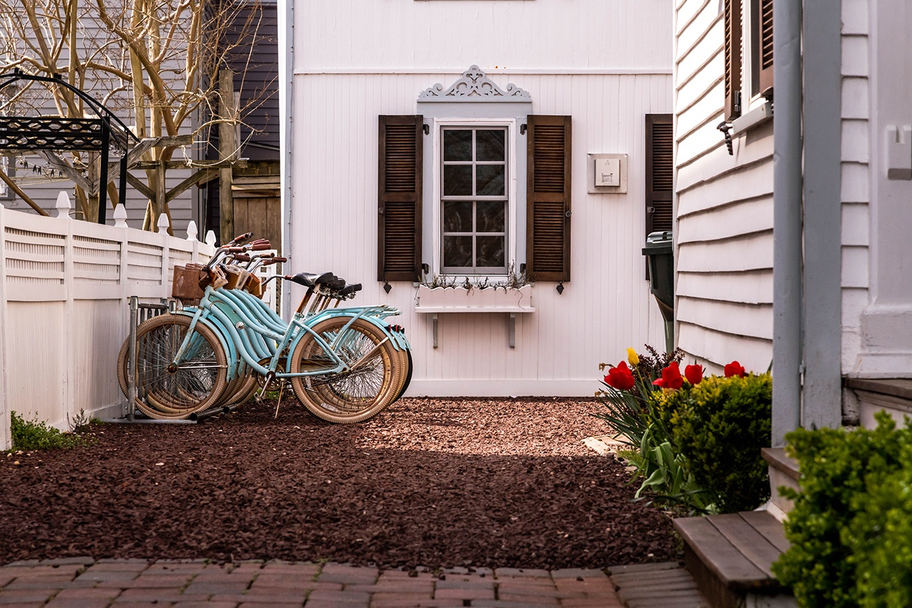 A row of turquoise bikes down a driveway with red and yellow tulips