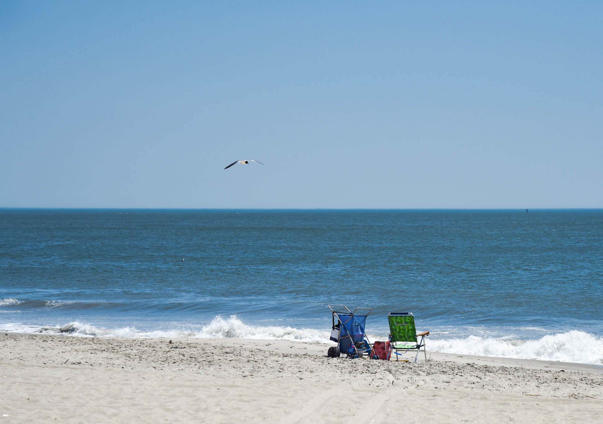 Later in the afternoon where a seagull flies by over a beach chair