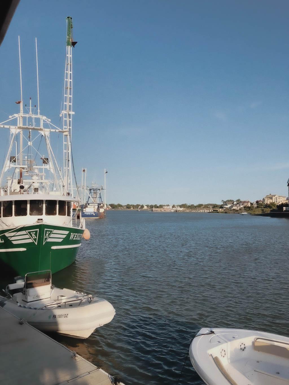 Overlooking The Harbor