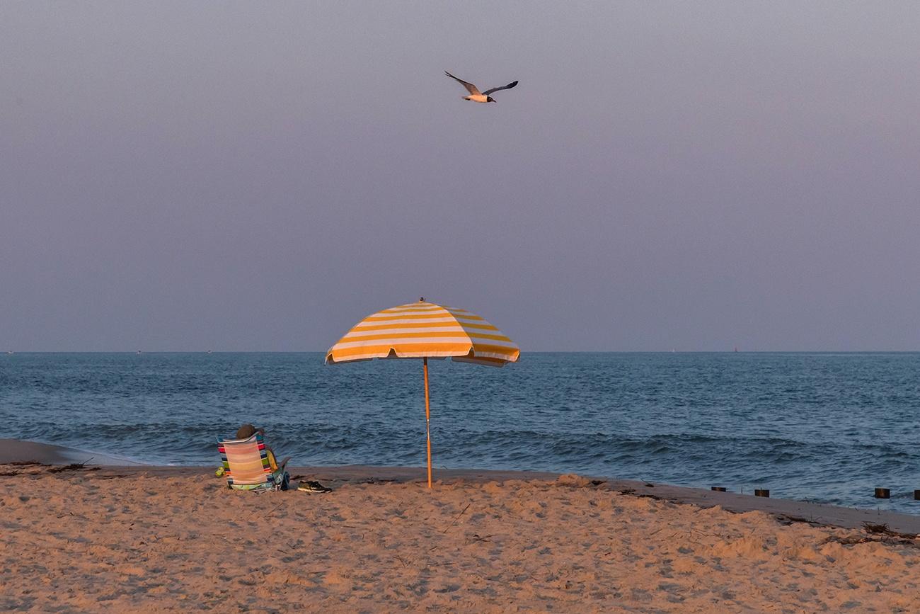 A person sitting under a yellow beach umbrella at the beach while a seagull flies overhead