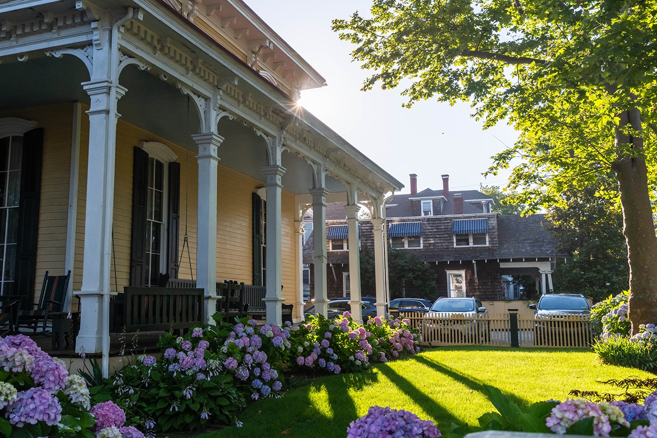 Hydrangea flowers and sun shining on the front lawn at the Mainstay Inn