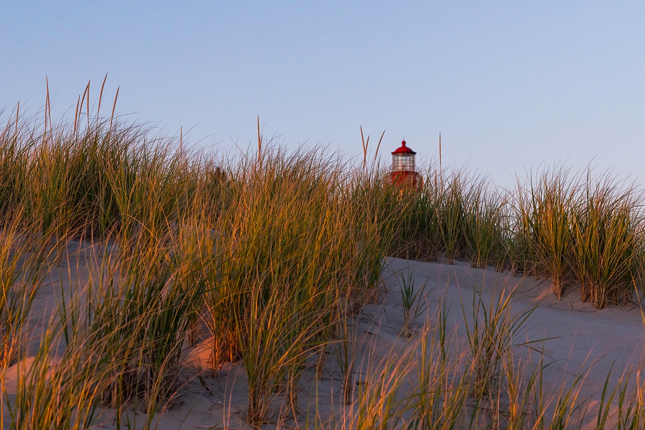 The top of the Cape May Lighthouse behind green and gold beach dunes