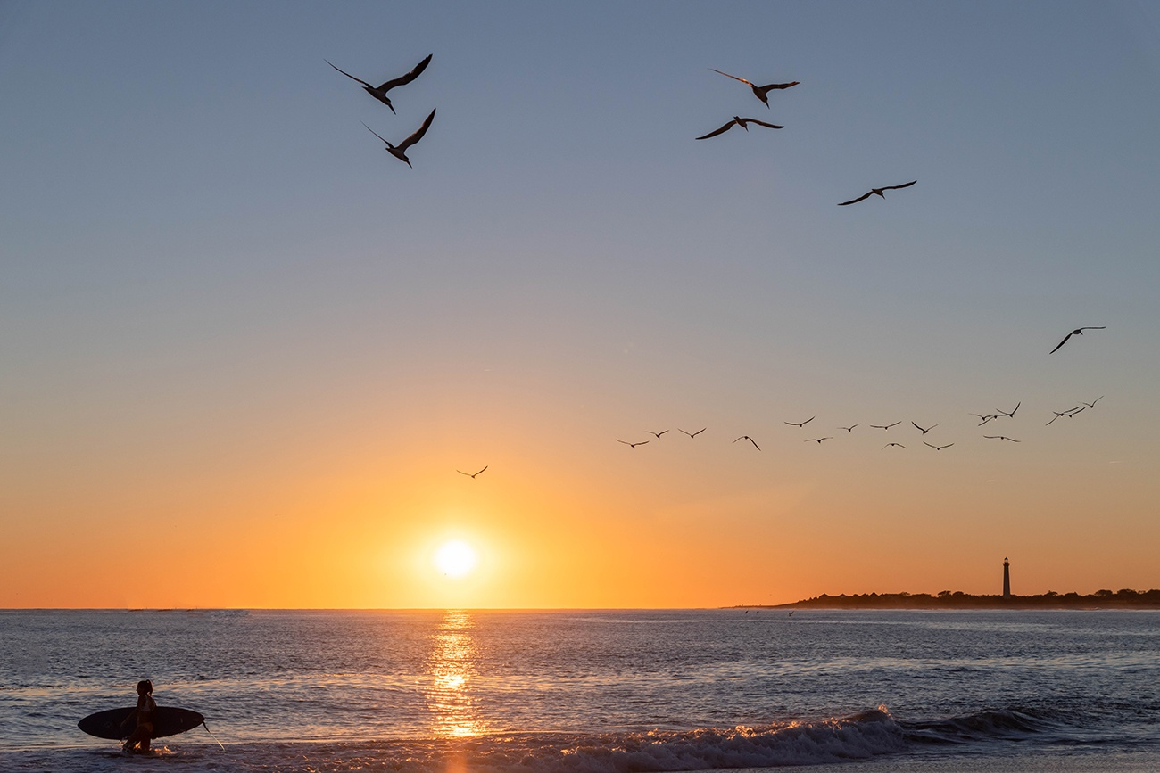 A flock of birds flying towards sunset and the Cape May Lighthouse as a surfer walks into the ocean