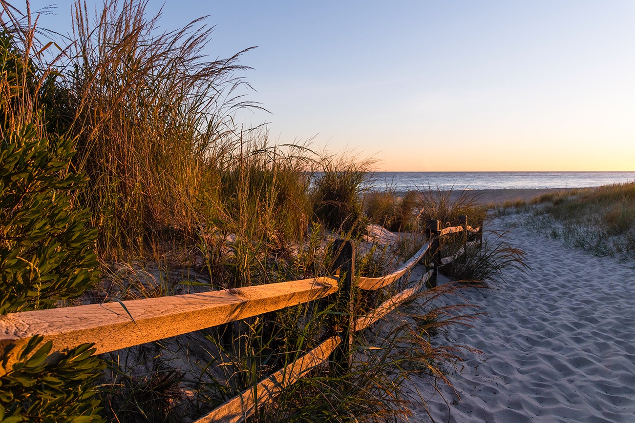 A wooden fence and dunes leading to the beach at sunset