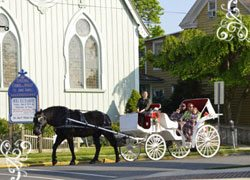 cape-may-carriage