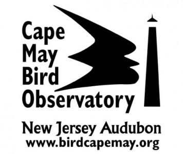 Cape May Bird Observatory 2 moreover Garden Junks Rubbles together with Smcc Gateway as well Gimbels Pittsburgh Pennsylvania also 2007 05 01 archive. on garden furniture north east