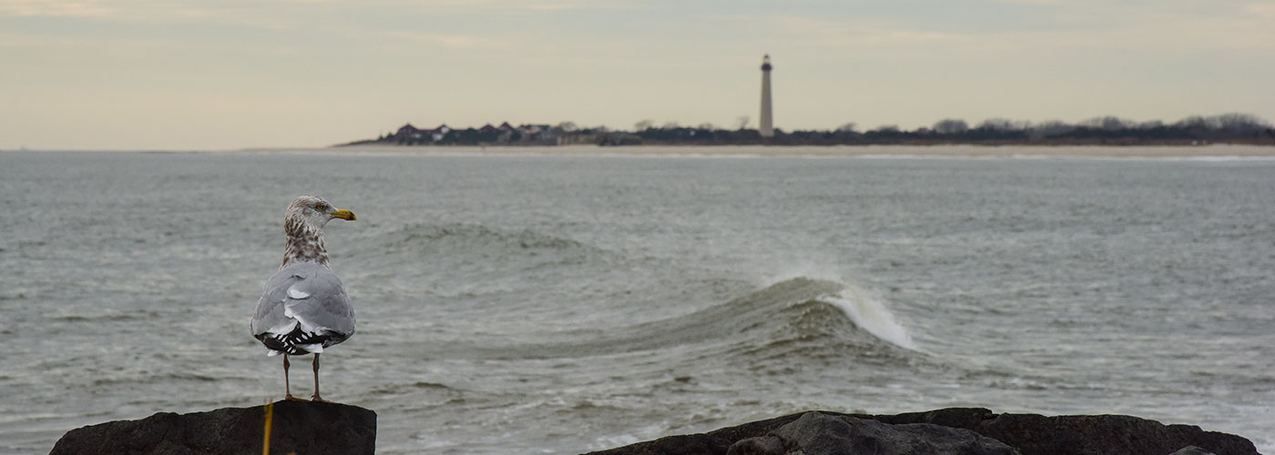 The Cove Beach and view of the Cape May lighthouse