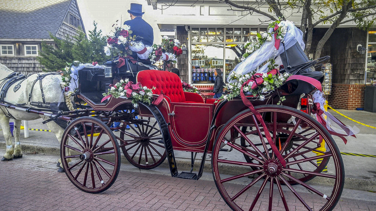 Cape May Carriage Company – Cape May Beach Weddings | CapeMay.com