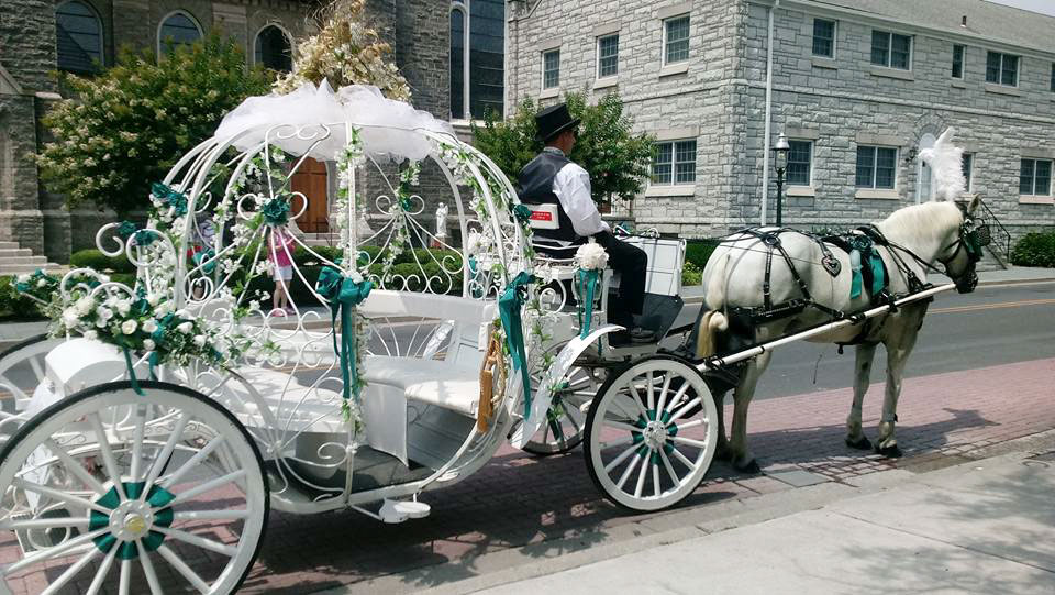 Cape May Carriage Company Cape May Beach Weddings Capemay